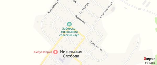 Парковая улица на карте деревни Никольской Слободы с номерами домов