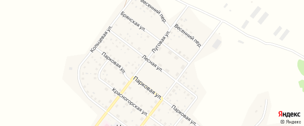 Лесная улица на карте деревни Никольской Слободы с номерами домов