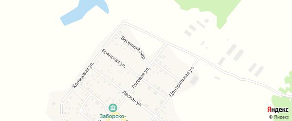Весенний переулок на карте деревни Никольской Слободы с номерами домов