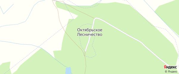 Лесная улица на карте хутора Октябрьского Лесничества с номерами домов