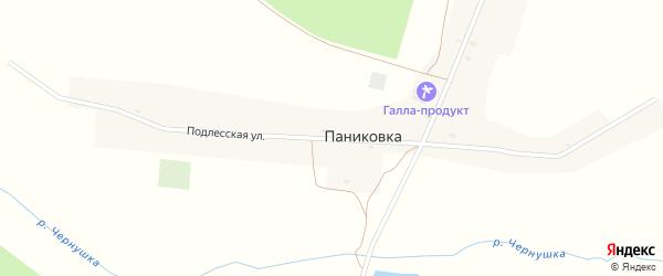 Подлесская улица на карте деревни Паниковки с номерами домов