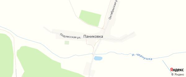 Карта деревни Паниковки в Брянской области с улицами и номерами домов