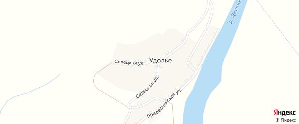 Селецкая улица на карте деревни Удолья с номерами домов