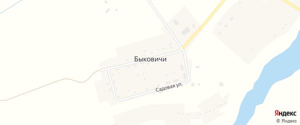 Речная улица на карте деревни Быковичи с номерами домов