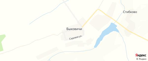 Карта деревни Быковичи в Брянской области с улицами и номерами домов