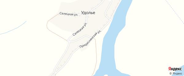 Придеснянская улица на карте деревни Удолья с номерами домов