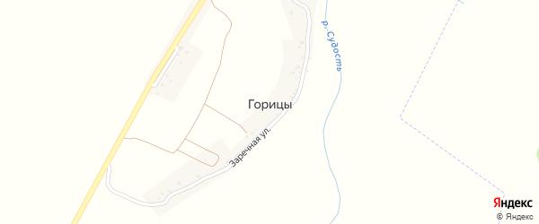 Заречная улица на карте деревни Горицы с номерами домов