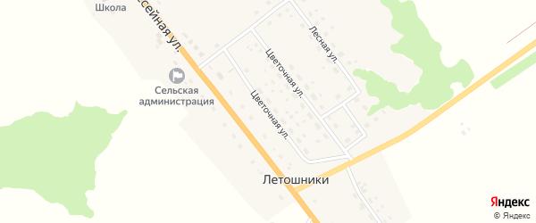 Цветочная улица на карте деревни Летошники с номерами домов