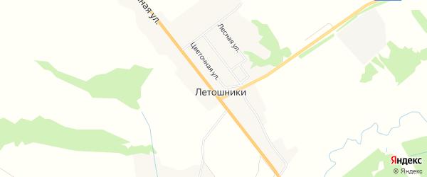 Карта деревни Летошники в Брянской области с улицами и номерами домов