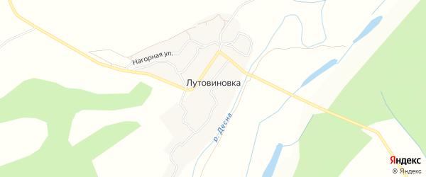 Карта деревни Лутовиновки в Брянской области с улицами и номерами домов