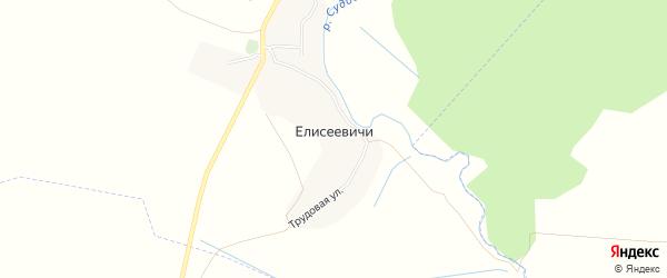 Карта деревни Елисеевичи в Брянской области с улицами и номерами домов