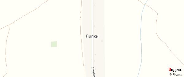 Центральная улица на карте поселка Липки с номерами домов