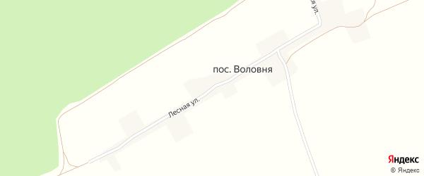 Лесная улица на карте поселка Воловни с номерами домов