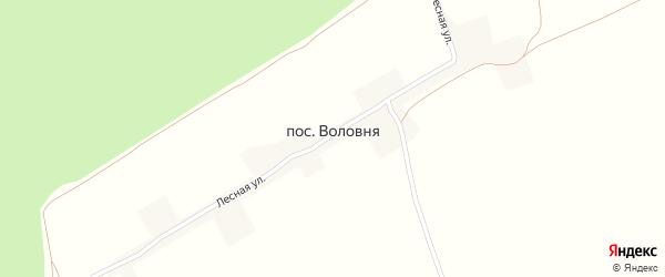 Цветочная улица на карте деревни Воловни с номерами домов
