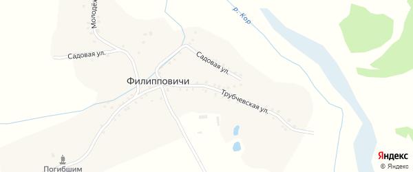 Трубчевская улица на карте села Филипповичи с номерами домов