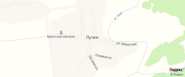 Улица Шеметова на карте деревни Лучки с номерами домов