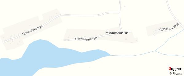 Приозерная улица на карте деревни Нешковичей с номерами домов