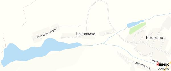 Карта деревни Нешковичей в Брянской области с улицами и номерами домов