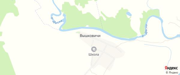 Карта деревни Вышковичей в Брянской области с улицами и номерами домов