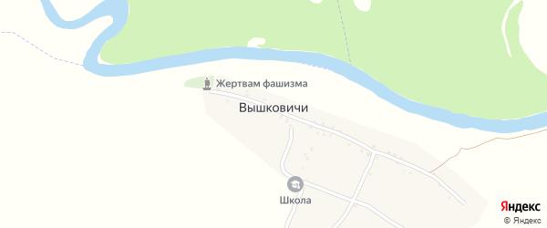 Школьный переулок на карте деревни Вышковичей с номерами домов