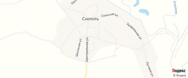 Карта села Снопоти в Брянской области с улицами и номерами домов