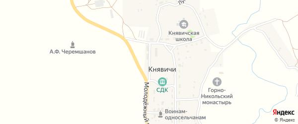 Новая улица на карте села Княвичей с номерами домов