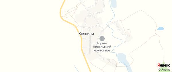 Карта села Княвичей в Брянской области с улицами и номерами домов