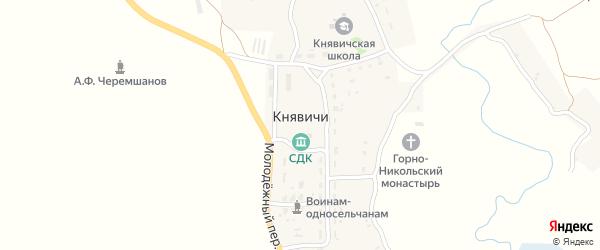 Заречная улица на карте села Княвичей с номерами домов