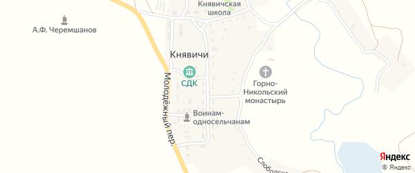 Молодежная улица на карте села Княвичей с номерами домов