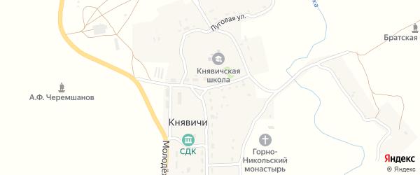 Пришкольная улица на карте села Княвичей с номерами домов