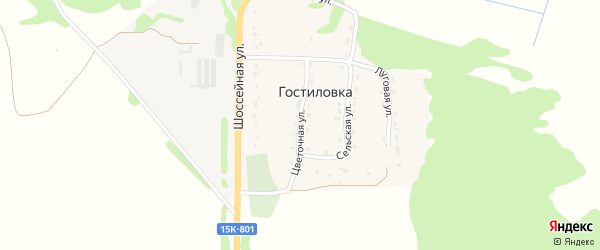 Цветочная улица на карте поселка Гостиловки с номерами домов