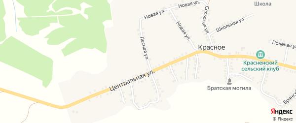 Лесная улица на карте деревни Красного с номерами домов