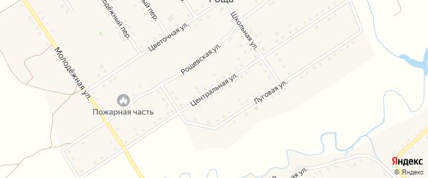 Центральная улица на карте поселка Рощи с номерами домов