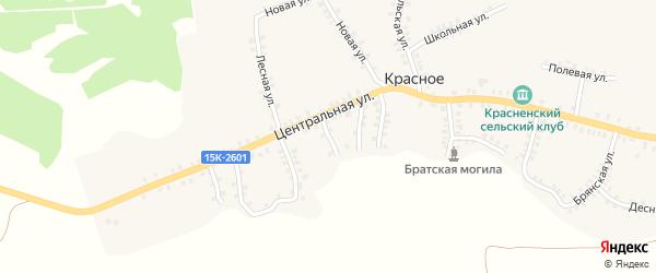 Почтовый переулок на карте деревни Красного с номерами домов