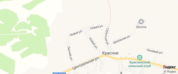 Новая улица на карте деревни Красного с номерами домов