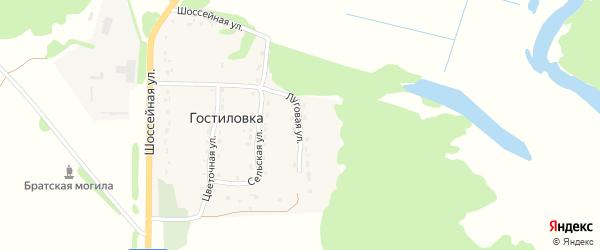 Луговая улица на карте поселка Гостиловки с номерами домов