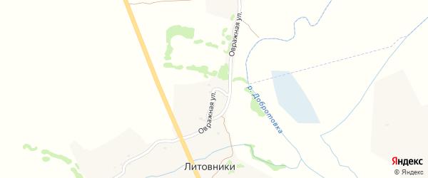 Овражная улица на карте деревни Литовники с номерами домов