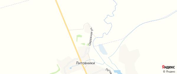 Карта деревни Литовники в Брянской области с улицами и номерами домов