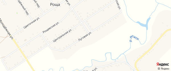 Луговая улица на карте поселка Рощи с номерами домов