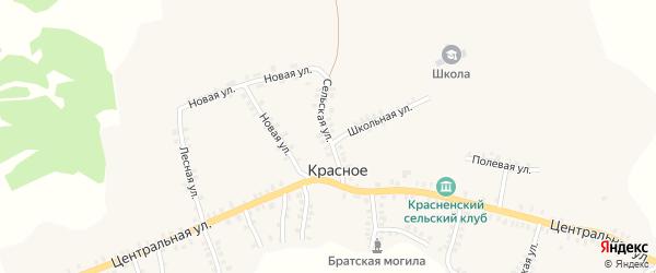 Сельская улица на карте деревни Красного с номерами домов