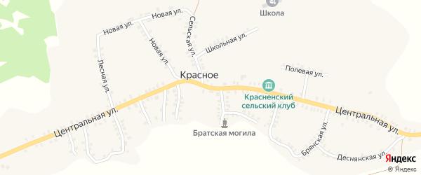 Центральная улица на карте деревни Красного с номерами домов
