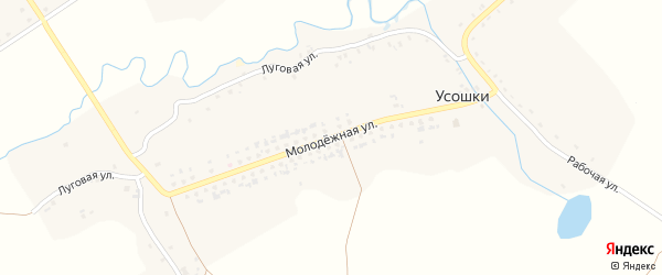 Молодежная улица на карте села Усошки с номерами домов