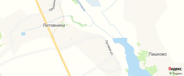 Луговая улица на карте деревни Литовники с номерами домов