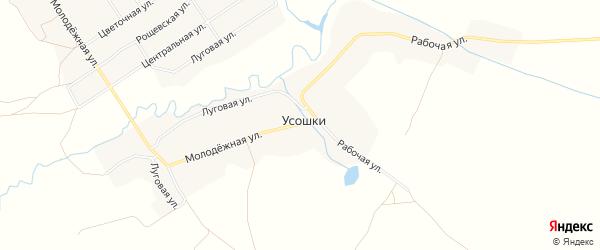 Карта села Усошки в Брянской области с улицами и номерами домов