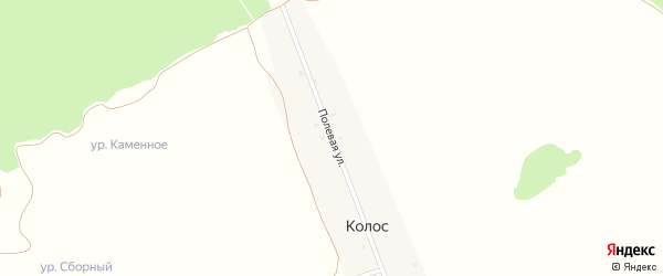 Полевая улица на карте поселка Колоса с номерами домов