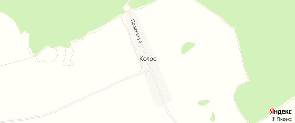 Карта поселка Колоса в Брянской области с улицами и номерами домов