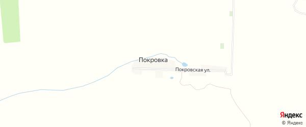 Карта деревни Покровки в Брянской области с улицами и номерами домов