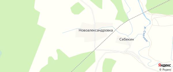 Карта деревни Новоалександровки в Брянской области с улицами и номерами домов