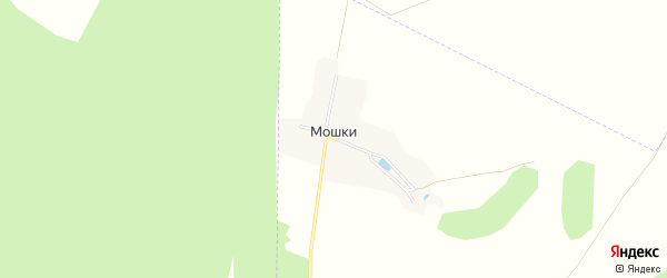 Карта поселка Мошки в Брянской области с улицами и номерами домов