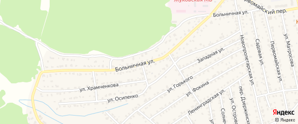 Больничная улица на карте Жуковки с номерами домов